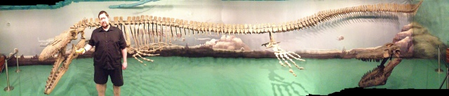 Guinness World Record Largest Mosasaur